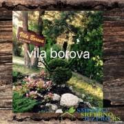 Vila borova