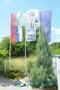 Vila Milo ****